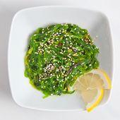 Постер, плакат: Японский салат салат из морских водорослей seaweed с белым кунжутным соусом