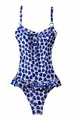 Wasted Blue Hearts Frilly Swimsuit