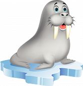 image of blubber  - Vector illustration of Cute walrus cartoon on ice - JPG