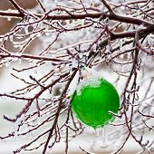 Ornament In Snow