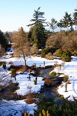 Winter Wonderland River Bridge Trees Snow Covered Plains I