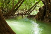 River in tropical forest near the Umphang Thi Lo Su Waterfall.  Tak Province in northwestern Thailan