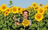 farmer standing in a sunflower field