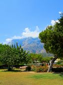 Municipal Park Ataturk