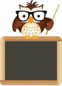 Owl Teacher with School Board