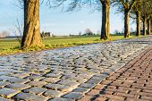stock photo of paved road  - Detailed view at an old cobblestone road in autumnal sunlight - JPG