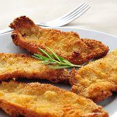 a plate with some spanish escalopa de pollo a la milanesa, breaded chicken fillets