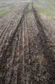 Tire Tracks Trail Dug Into Cultivated Farm Land Field