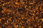 picture of tobaco leaf  - Background is of chopped tobacco leaves on flat surface - JPG