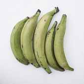 stock photo of plantain  - Five green plantains on an isolated background - JPG