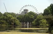 Saint James Park And London Eye, London