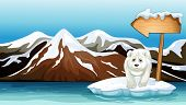 Illustration of a polar bear above the iceberg with a signboard