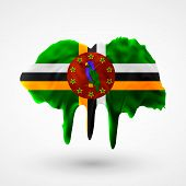 Flag of Dominica painted colors