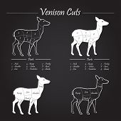 Venison Meat Cut Diagram Scheme