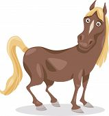 Funny Horse Cartoon Illustration