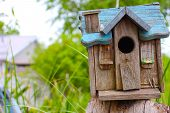 Birdhouse with a Blue Roof