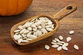 wooden rustic scoop of pumpkin seeds against grunge wood