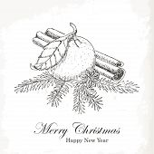 Christmas card with sketch mandarin, vanilla, cinnamon and spruce twigs. Hand drawing
