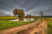 Pond fields