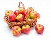 Ripe Apples In Basket