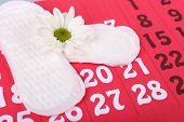 stock photo of menses  - Sanitary pads and white flower on red calendar background - JPG