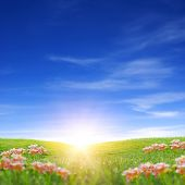 Sun rise in spring