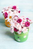 Beautiful flowers in cans on table on light background
