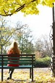 picture of pain-tree  - Lonely woman on bench in park - JPG