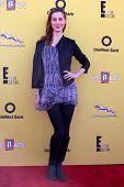 LOS ANGELES - NOV 16:  Eva Amurri Martino at the PS Arts Express Yourself Benefit at the Barker Hanger on November 16, 2014 in Santa Monica, CA
