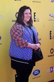 LOS ANGELES - NOV 16:  Melissa McCarthy at the PS Arts Express Yourself Benefit at the Barker Hanger on November 16, 2014 in Santa Monica, CA
