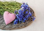 Bouquet Of Purple Cornflowers And Heart