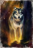 stock photo of serenade  - Wolf painting on canvas color background on paper multicolor illustration - JPG
