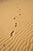 image of footprints sand  - Footprint on sand dune in Maspalomas on Gran Canaria Canary islands Spain - JPG