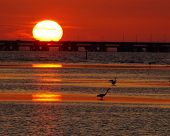 picture of skyway bridge  - progression of sunset at sunshine skyway bridge - JPG