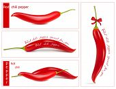 Vector illustration. Red chili pepper.