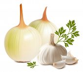 Photorealistic vector. Onion and garlic.