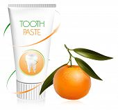 Vector illustration. Toothpaste with fresh tangerine.