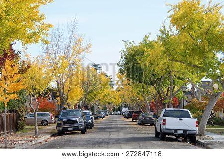 Suburan Residential Neighborhood With Trees