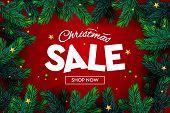 Christmas Sale Banner, Xmas Sparkling Lights, Christmas Tree Branch. Horizontal Christmas Posters, C poster