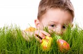 picture of easter-eggs  - Easter egg hunt - JPG