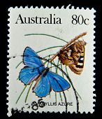 AUSTRALIA - CIRCA 1980s: A stamp printed in Australia shows butterfly Amaryllis Azure , circa 1980s
