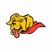 Sports Mascot Icon Illustration Of Head Of A Super Yellow Labrador Retriever Dog Wearing A Red Cape  poster