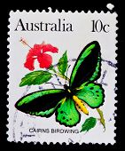 AUSTRALIA - CIRCA 1980s: A stamp printed in Australia shows butterfly Cairns Birdwing, circa 1980s