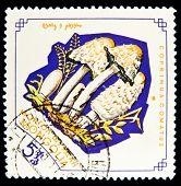 MONGOLIA - CIRCA 1964: A stamp printed by Mongolia shows mushroom, circa 1964.