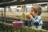 Healthy Food. Healthy Food For Healthy Child. Organic Food Concept. Small Boy Farmer Eating Healthy  poster