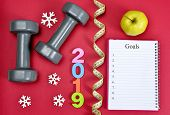 Dumbbells With Apple And Open Notebook On Red Background. Healthy Resolutions For The New Year 2019. poster
