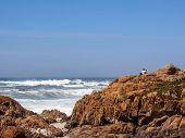 Atlantic Ocean Coastline Rocky Landscape In Portugal, Europe poster