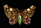 a golden butterfly gem encrusted brooch