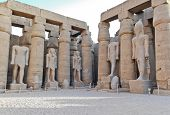 picture of ramses  - Standing Statue Of Ramses II In Luxor Temple - JPG
