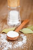 salt in spoon and shaker, bay leaves on rustic wooden table